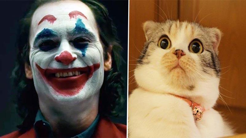 Arrestan a persona disfrazada como Joker