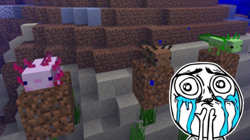 Minecraft-Ajolote